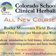 New at CSCH: Rocky Mountain Field Botany Certificate Course