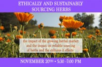 Ethically and Sustainably Sourcing Herbs